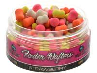 WLC Carp Feeder Wafters Strawberry