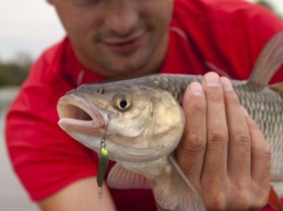 Lingurita oscilanta SV Fishing Koketka 2.5cm 2g SB08