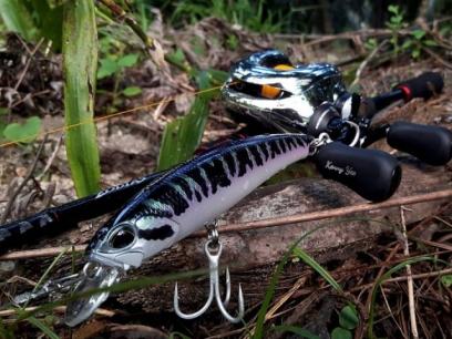 Vobler DUO Fangbait 120SR 12cm 25.8g AFA3333 Wild Arapaima F