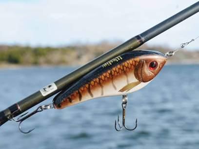 Vobler Westin Swim 10cm 31g Real Roach F