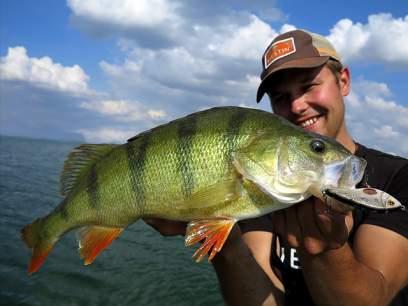 Vobler Westin Swim 12cm 53g Chartreuse Splash S